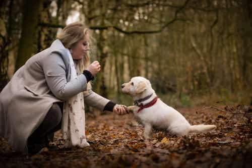 photo of dog giving paw to his mum