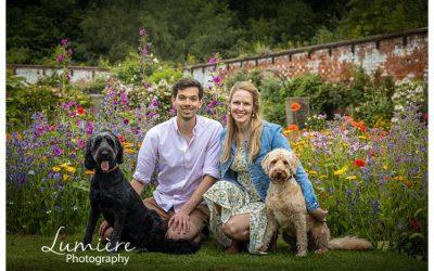 Dogs photoshoot at Elvaston Castle